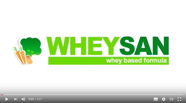 video informativo sobre Wheysan Proyecto Europeo
